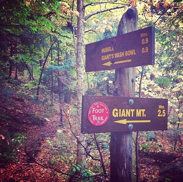 Giant Mtn Trail Sign