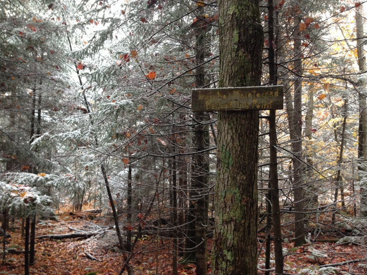 Access to Nye Mountain and Street Mountain are via unmaintained trails.